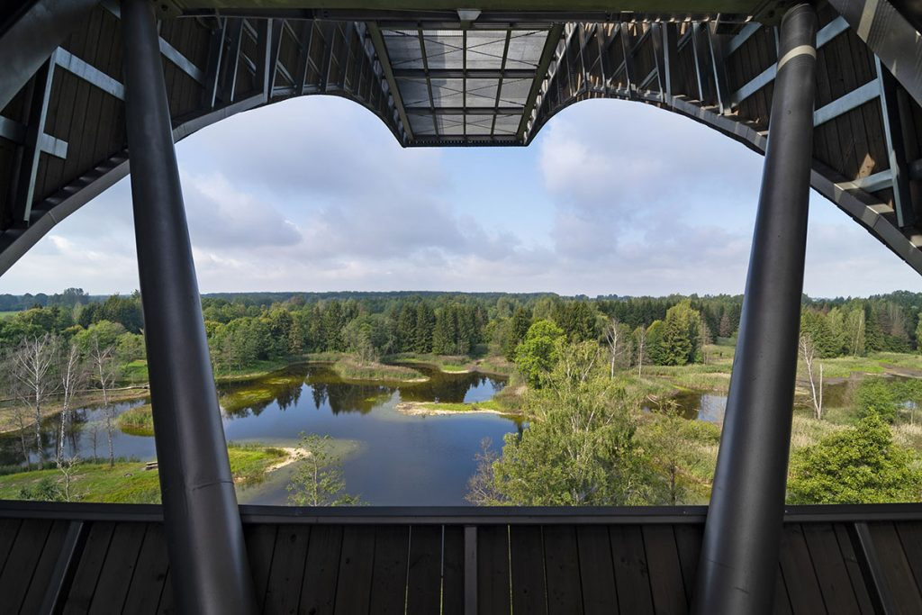 View from Kirkilai observation tower Lithuania