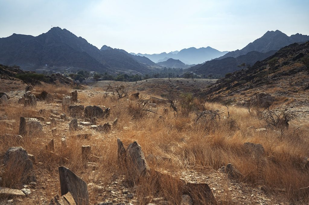 valley in wadi tayyibah