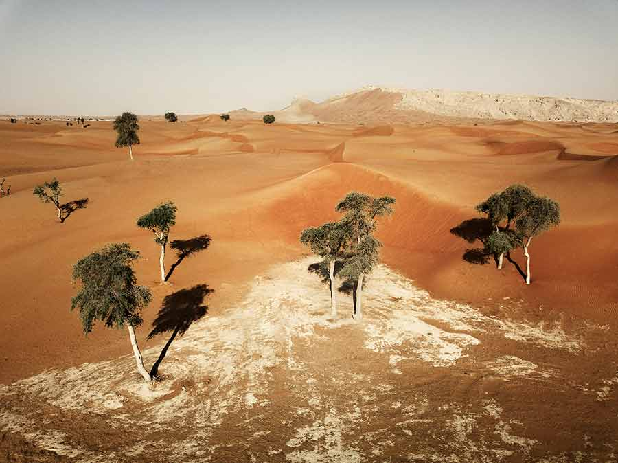 mleiha dunes with fossil rock in the background uae